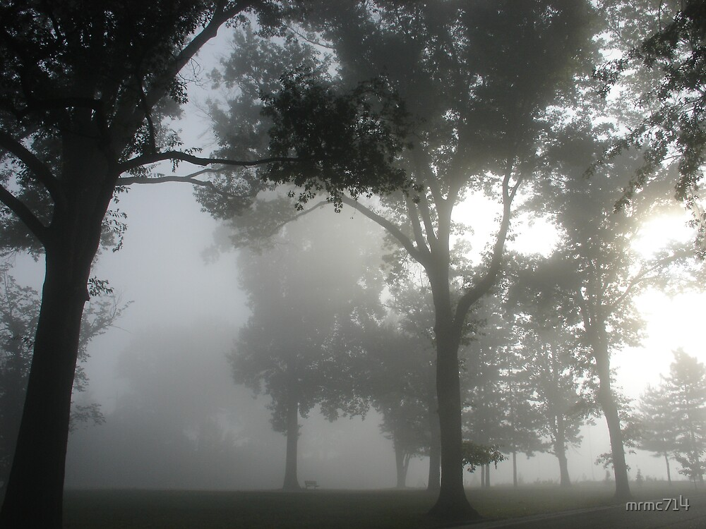 hgld park fog 3 by mrmc714