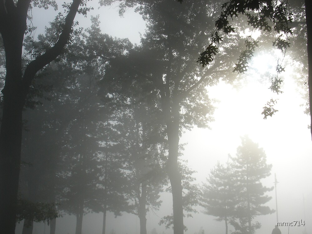 hgld park fog 4 by mrmc714