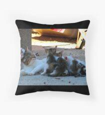Kittens Throw Pillow