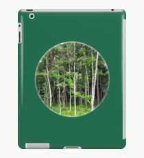 Tranquil Forest Glimpse iPad Case/Skin