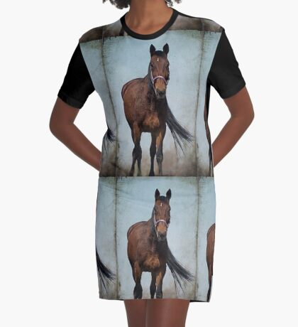 Dust In The Wind Graphic T-Shirt Dress