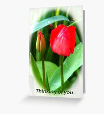 Happy Mothers Day........Sunday 26th March Greeting Card