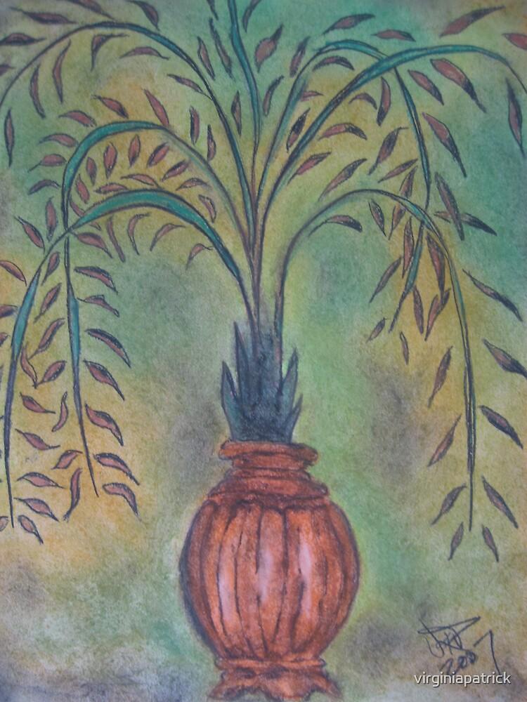 3 Plant Trio by virginiapatrick