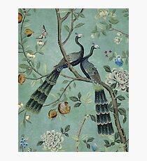A Teal of Two Birds Chinoiserie Photographic Print