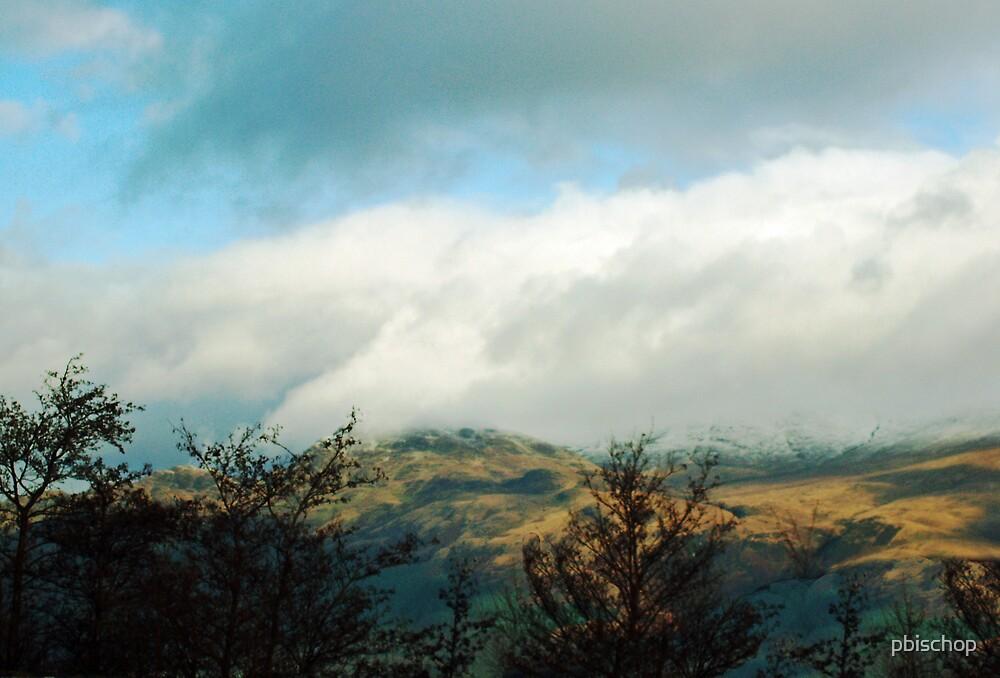 Scottish Highlands by pbischop