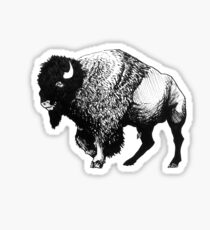 Buffalo Ink Bison Drawing Sticker