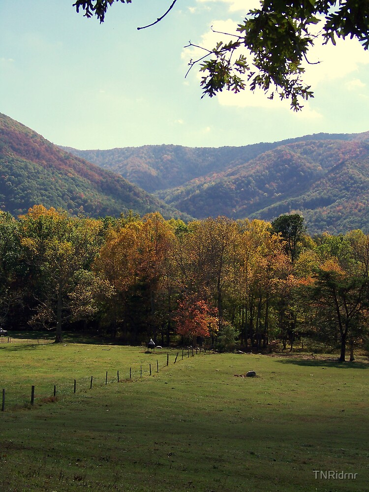Cades Cove TN by TNRidrnr