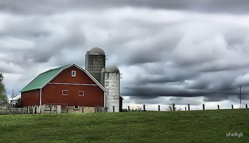 The Barn by shellyb