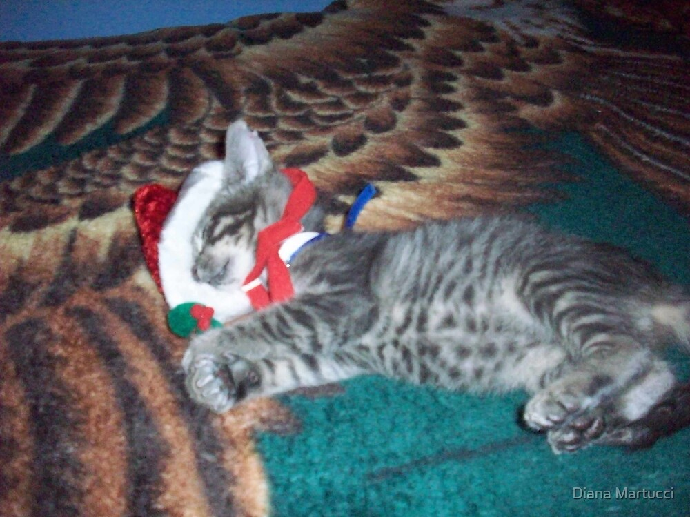 Out cold for the Holidays by Diana Martucci