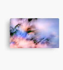 LET THE WINDS OF THE HEAVENS DANCE Canvas Print
