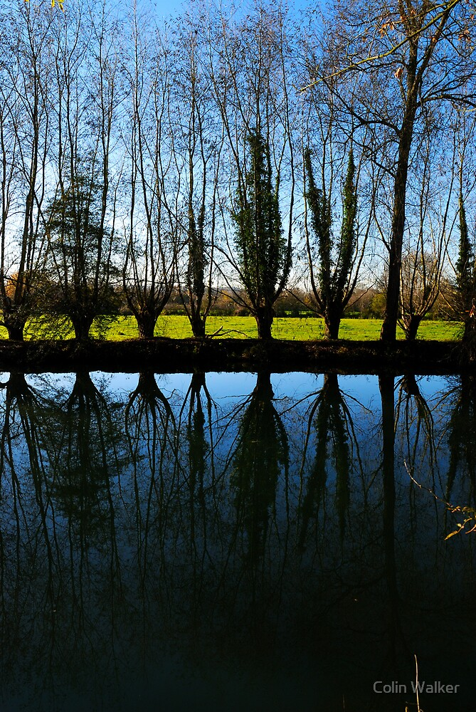 River Reflect by Colin Walker
