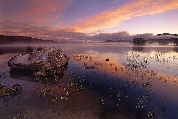 Lake Takepo by Ed Gordon