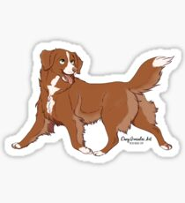 duck toller Sticker