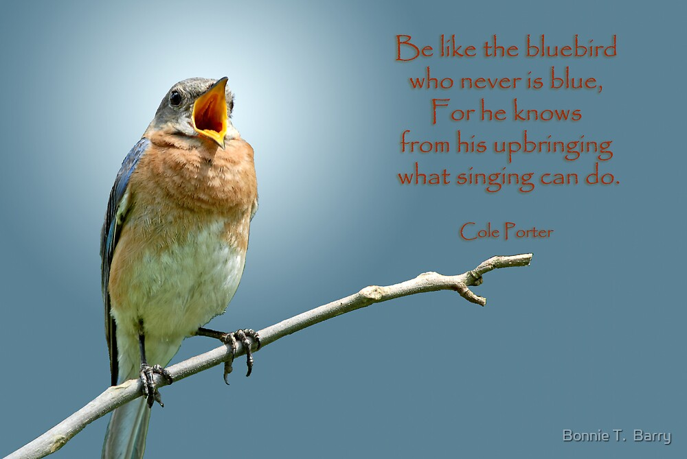 Be like the bluebird . . . by Bonnie T.  Barry