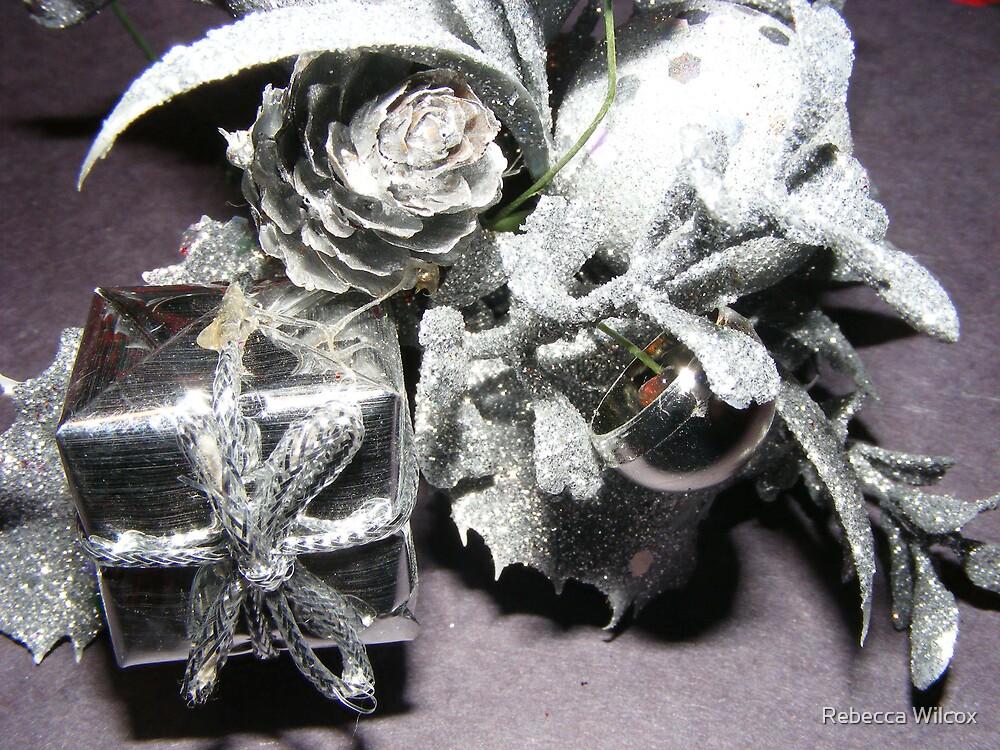 silver by Rebecca Brann