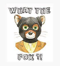 Mr Fantastic - Fantastic Mr Fox, What The Fox ?! Photographic Print