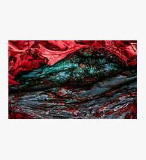 Mouth of the Forest Giant Photographic Print