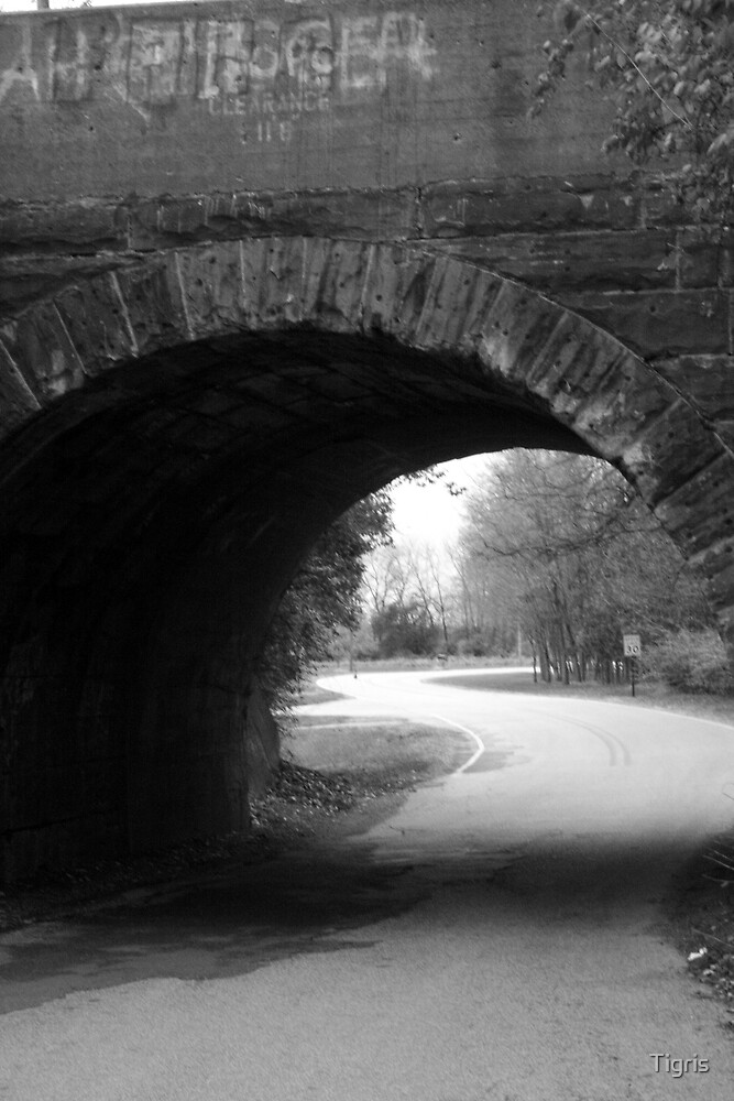 Old Bridge by Tigris