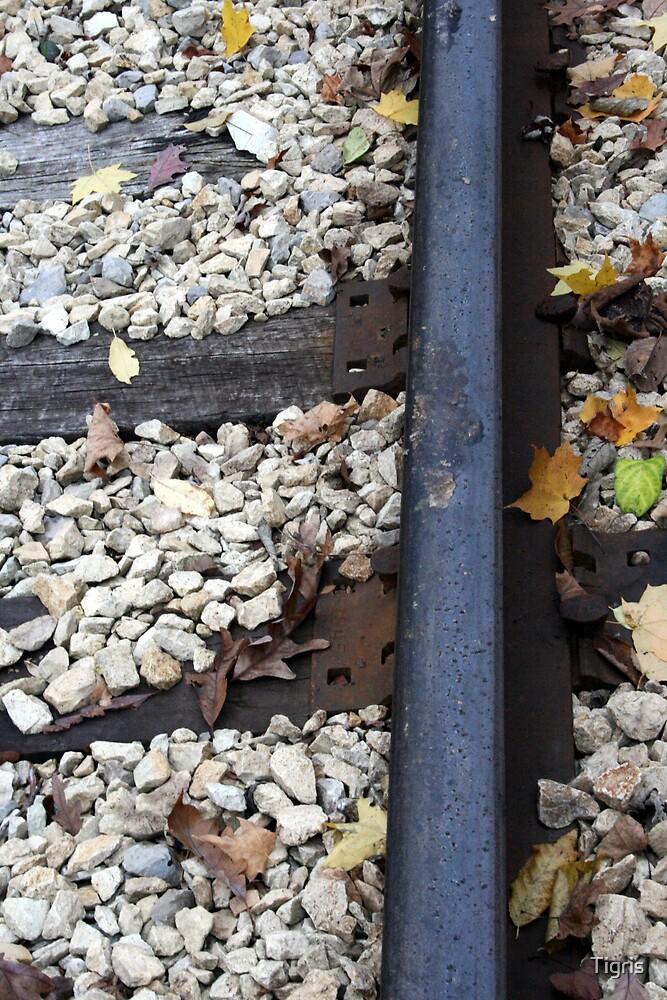 Railroad Track by Tigris