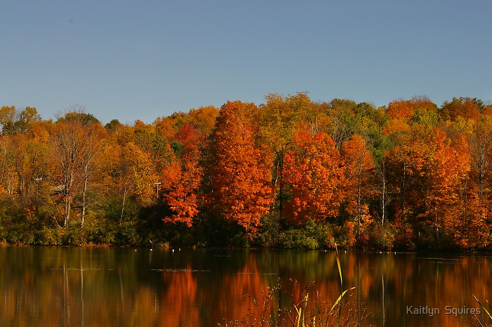 New england reflection by Kaitlyn  Squires