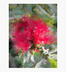 Red Flower and Grey Leaves Photographic Print