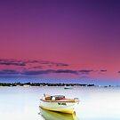 Mill Pond Sunrise - Victoria Point Qld Australia by Beth  Wode
