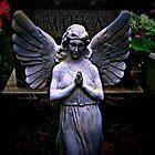 Angel Glow by Jane Neill-Hancock