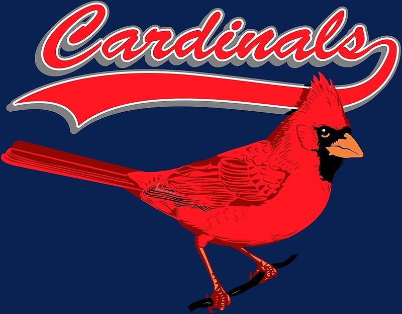 Cardinals T Shirts Women S