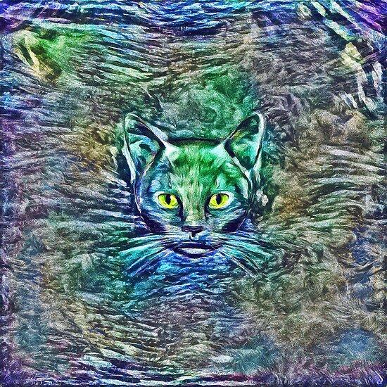 Maritime cat