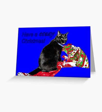 CRAZY KITTY CHRISTMAS CARD. Greeting Card
