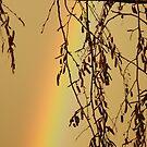 Muggy Rainbow Sky by Amy-lee Foley