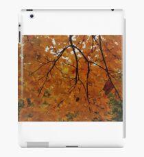Autumn colours iPad Case/Skin
