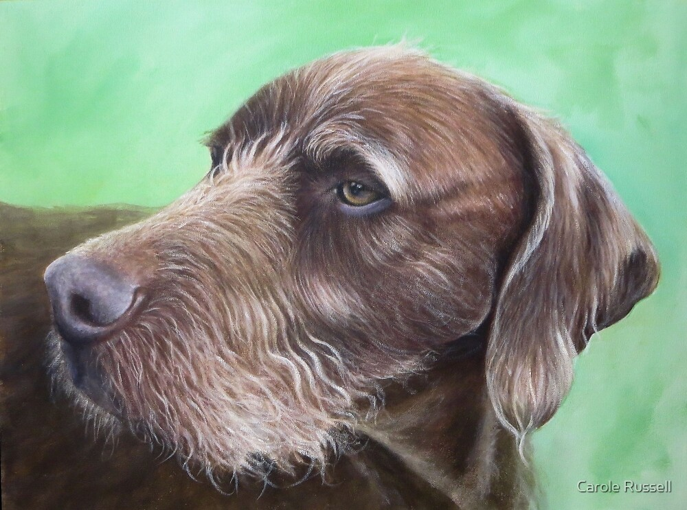 Baden by Carole Russell