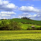 Spring in Val d'Orcia by annalisa bianchetti