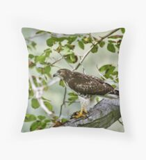RedTail Lunch Throw Pillow