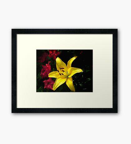 jaune et rouge Framed Print