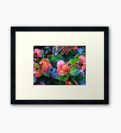 Neon Nature Framed Print