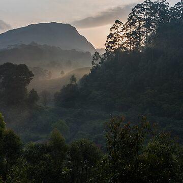 Sun beams, Munnar by berrega