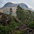 Anamudi mountain, munnar by Guy  Berresford