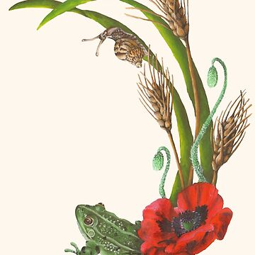 Frog and Poppies beneath Wheat, Grass and Snail Wildlife by ImogenSmid