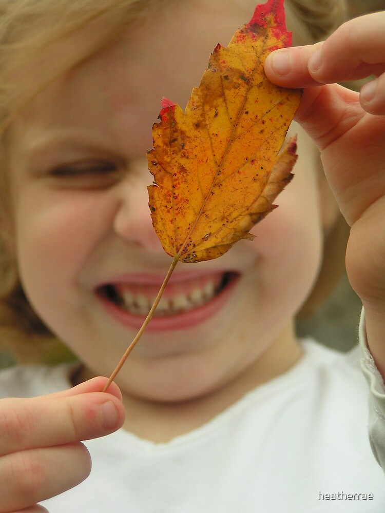 Cara's favorite Leaf by heatherrae