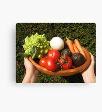 appetizing vegetables  Canvas Print