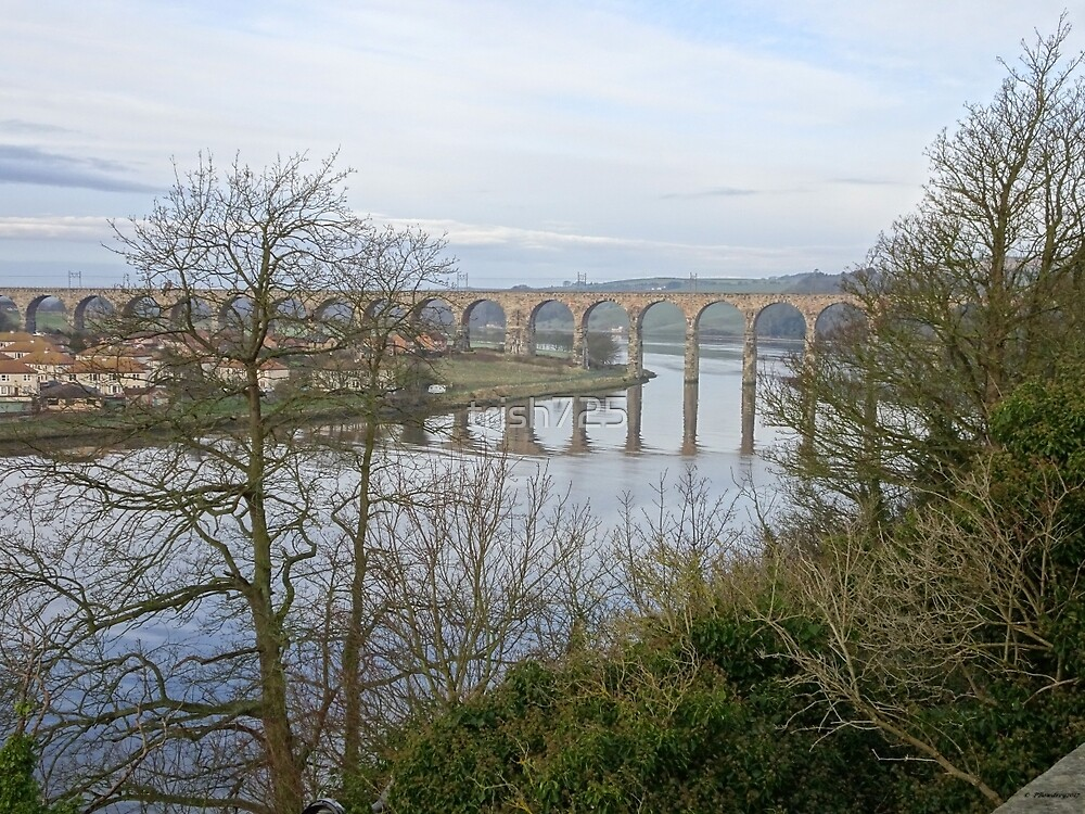berwick upon tweed single hispanic girls Dating offers shop garden shop bookshop tickets  seven good reasons to go to berwick-upon-tweed  a two-wheeled tour on the trail of london's most pioneering women.
