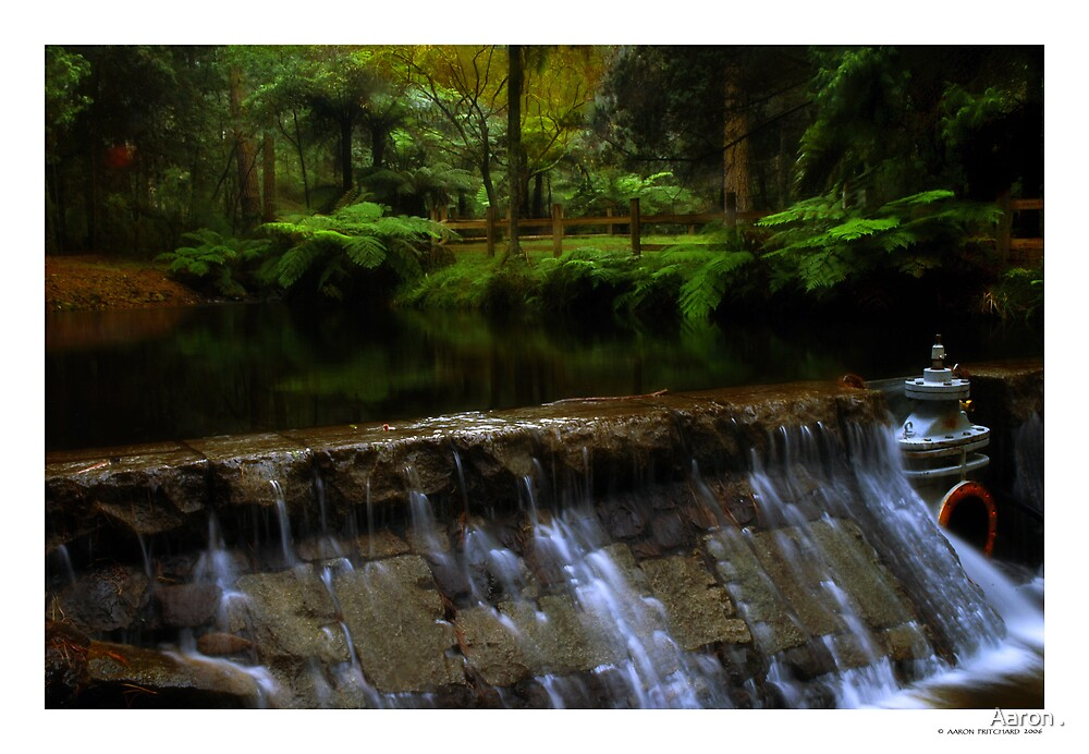 Donnelly's Weir by Aaron .