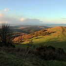 A winters day on the Malvern Hills by LisaRoberts