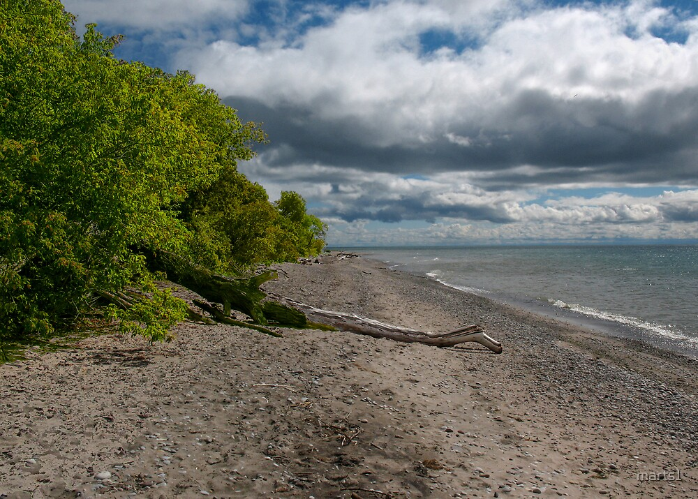 On the Shore by marts1