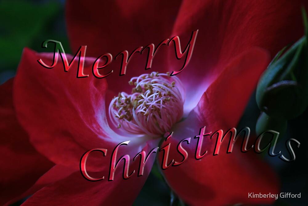 Merry Christmas  by Kimberley Gifford
