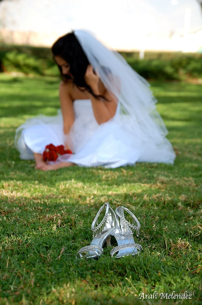 Wedding shoes by photovixen04