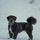 Schneemonster von Abiix