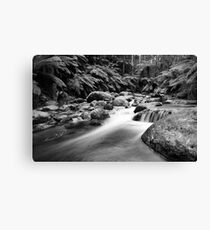 Raw Canvas Print